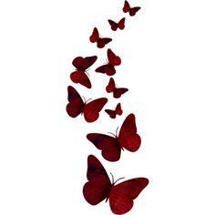 8.png ❤ liked on Polyvore featuring butterflies, backgrounds, filler, phrase, quotes, saying and text