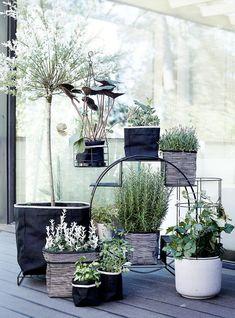 luhta home garden kylvö - Google-haku#garden #gardenideas #contemporary