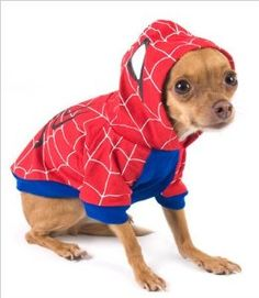 "Spider-Dog Costume for Dogs - Size 3 (10.75"" x 14"" - 16"" g) -- Buy it securely online from BuyDogSweaters.com."