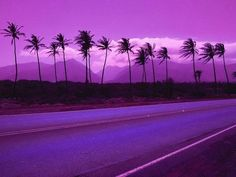 Violet ;o What color is your imagination?