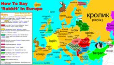 "maps-oe: "" 🐰How To Say 'Rabbit' In Europe, with Etymology🐰 ""This is an improved version of the map I posted in 2015 "" "" European Languages, World Languages, United Nations Peacekeeping, Old Maps, City Maps, Rabbit, Politics, Sayings, Ancestry"