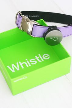 Whistle Activity Monitor - like a Fit Bit for dogs! You just attach to your dog's collar and it sends real time stats to your phone. Even when you're not there you can see when your dog's exercising, playing and resting. #dog #fitness
