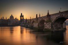 Утренний взгляд (Morning Eye). Автор фото: Марек Киевски (Marek Kijevsky).