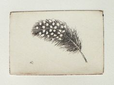 original etching of a spotted feather by atelier28 on Etsy, $25.00