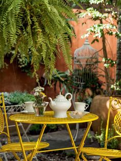 Plantas reconectam os moradores desta casa à natureza - Casa#14