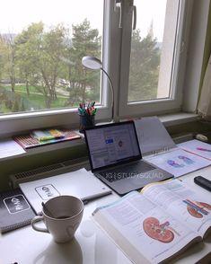 Study Room Decor, Study Rooms, Study Areas, Study Space, Study Desk, College Motivation, Study Motivation, Tittle Ideas, Study Corner