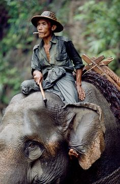 Myanmar (Burma), 1994 by Steve McCurry