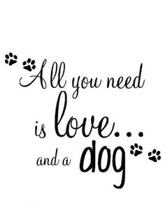 #chihuahuas #chihuahuasonly #onlychihuahuas #chihuahuastagram #instachihuahua #chihuahuaoftheday #chihuahualover #chihuahuaworld #chihuahualife #chihuahuanation #chihuahuasrule #dognation #smalldog #bestdog #dogmodel #ilovemychi #chilove #ilovemydog #sweetdog #happydog #dogsofficial #doglover #instagramdog #tinydogs #peopledog #dogworld #dogslife #chihuahuafanatic #chihuahuas_of_instagram #gooddog Image By: my_inspiration_is_youuuu http://bit.ly/teacupdogshq