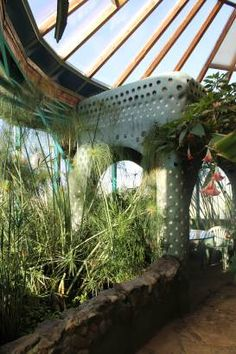 Earthship - Greenhouse~~~would totally use the aquatic space to grow rice instead of the papyrus....well maybe i'd like a few papyrus plants (would like to learn to make paper out of 'em)