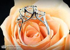 Google Image Result for http://www.whiteflash.com/articlefiles/beautiful-three-stone-ring-jananini-ramprasad.jpg