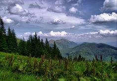 romania mountains - Căutare Google Carpathian Mountains, Scenery Pictures, Romania, Geography, Animal Pictures, Christine Feehan, Nature, Travel, Image