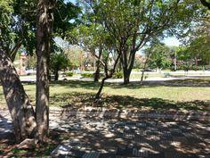 Plaza Prof. Herminio Gimenez en Asunción, Asunción