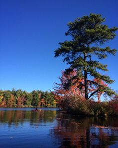 #WonderWatch 2015-156 Water Wander #paddle #kayaking #OptOutside #trees #inspiration #inspire #nature #naturephotography #SandyLongPhotos #autumn #ArtfulNature #fall #GetOutside #PA #Pennsylvania #UpperDelawareRiverRegion #zen #SeizeTheDay