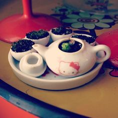 My Hello Kitty tea set planted with baby succulents and moss. (Taken with Instagram at San Francisco)