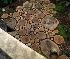 Wood Slice Walkway.  just kind of cool.  Don't think it would work in our yard though.