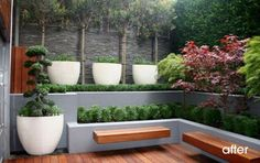 love the use of planters in the landscape. those benches are killer. and the boxwoods!