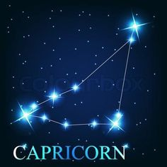 Vector of 'vector of the capricorn