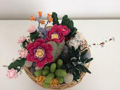 741 best cactus uncinetto images on pinterest plants for Il blog di sam piante grasse