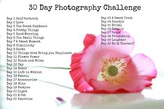 Spring Challenge for Photographers  Check out my own 30 day photography challenge. Design your own or try mine out!