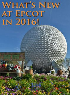 From Soarin' to Dory to Frozen, there are a lot of new additions coming to Epcot in 2016. Find out what new attractions you will find at Epcot on your next Walt Disney World vacation.