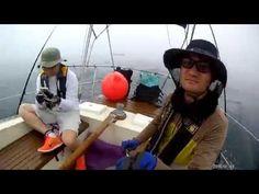sailing - YouTube