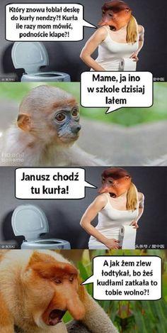 Wtf Funny, Funny Memes, Polish Memes, Haha, Smile, Humor, Ha Ha, Humour, Funny Photos