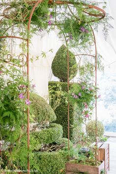 Build the marquee around a feature of the garden and you have the most 'Natural' ceremony setting. The Wilde Bunch decorated the arch keeping it simple, 'Just as it would grow in the garden'. An 'over-fussy' arch would have ruined the whole design. Marquee wedding flowers always look best when they appear to be an extension of the garden. Marquee Wedding, Keep It Simple, Canopy, Garland, Wedding Flowers, Arch, Outdoor Structures, Weddings, Natural