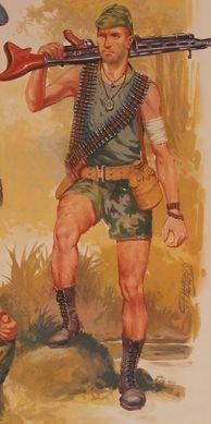 Portuguese Jungle fighter