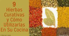 Descubra los beneficios de salud de las hierbas y especias. http://articulos.mercola.com/sitios/articulos/archivo/2014/04/12/9-hierbas-curativas-y-como-usarlas-en-la-cocina.aspx