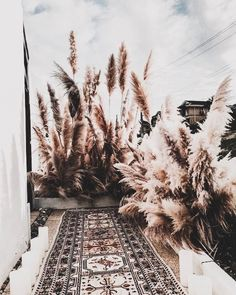 Exterior Garden Ideas Grass Ideas For 2019 Deco Floral, Arte Floral, Grass Decor, Design Jardin, Garden Design, Pampas Grass, Boho Wedding, Wedding Ceremony, Backdrop Wedding