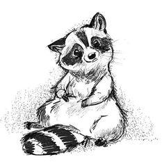 'Thoughtful Raccoon' by CritterPark Raccoon Craft, Baby Raccoon, Cute Raccoon, Racoon, Animal Sketches, Art Drawings Sketches, Cute Drawings, Animal Drawings, Raccoon Drawing