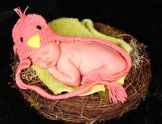 Newborn Baby girl Bird picture photo shoot session idea