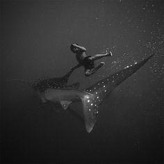 Photography ~ Black and White Underwater Photography Hengki Koentjoro