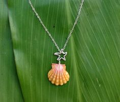 Sunrise Shell Sea Charms Necklace. $85.00, via Etsy.