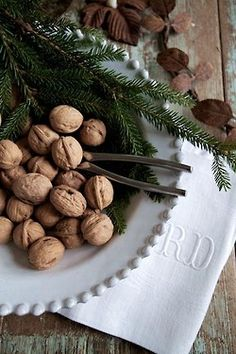 Cracking nuts around the holidays! Pecan, Walnut, and more!