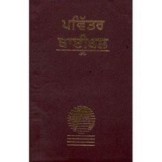 Punjabi Bible-FL-Easy to Read (Punjabi Edition) [Vinyl Bound]