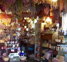 Inside Heart's Ease Herb Shop. To own a herb shop would be amazing!