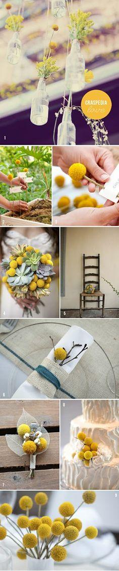 craspedia billy balls yellow theme wedding inspirations