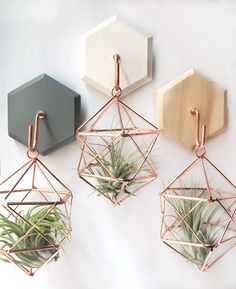 Geometric air plant hangers with hexagon hook. Cute with any decor!