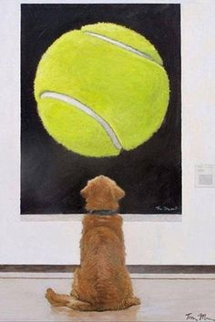 dog art This is my gift to golden retriever owners, to all dog owners, and I wanted to share it, Mosser said. All Dogs, Dogs And Puppies, Doggies, Funny Animals, Cute Animals, Crazy Animals, Love My Dog, Tier Fotos, Golden Retrievers