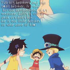 ASL- One Piece -Ace, Luffy, Sabo Watch your favorite anime series online One Piece Anime, One Piece Gif, Sabo One Piece, One Piece Funny, Manga Anime, Sad Anime, Manga Art, Monkey D Luffy, Zoro