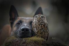 Mit denen, die einen Vogel haben, kann man an jeden Ort fliegen. Oder einfach am Boden bleiben und gemeinsam gegen jede Kälte stehen.... -----------------  Wünsche Euch ein schönes WE - wir fahren nachher ab zum Workshop !!! — mit Elke Mayerbacher.