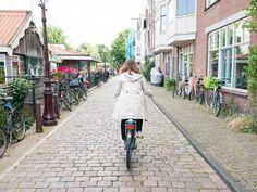 Conseil TRIP AMSTERDAM