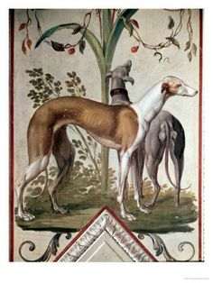 Greyhounds were introduced in England just prior to the ninth century