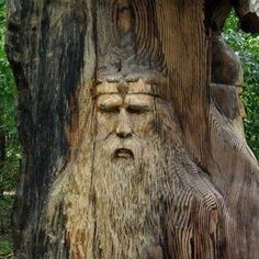 Vikings in the Trees ; Vikings, Celtic, Tree People, Tree Faces, Tree Carving, Wood Sculpture, Tree Art, Wood Art, Old Things