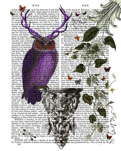 Purple Owl with Antlers Owl Illustration by DottyDictionary, $15.00