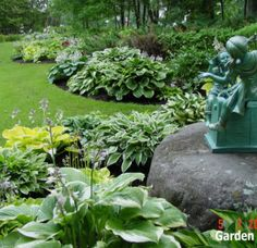 hosta garden landscaping ideas