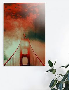 Vertigo on Curioos