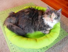 How to sew a cat bed- for all my DIY cat lover pinners. It's so cute and so is the cat!!!
