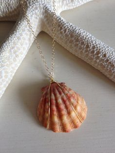 SALE Sunrise shell gold plated 16'' necklace, sunrise shell necklace